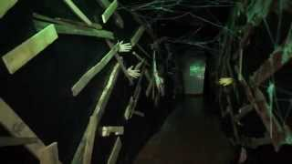 2014 Haunted Asylum.