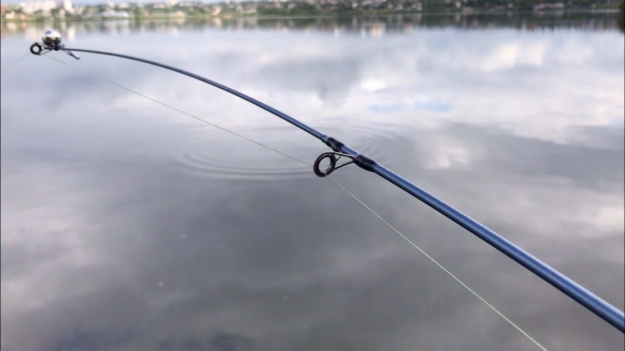 Фидерная рыбалка на карася | рыбалка на фидер 2020 | ловля на фидер весной | рыбалка в мае 2020