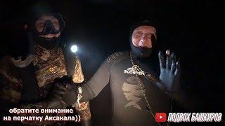 Подводная охота 2020 Подводная охота на сазана Закоряженный пруд с сазанами Битва с Аксакалом часть1