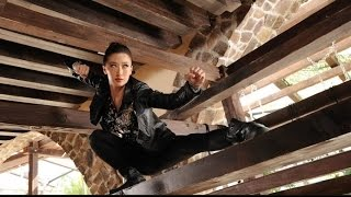 Best Action Movies 2017 | Chinese Movies in English With Subtitles Full Length Action Movies 2017