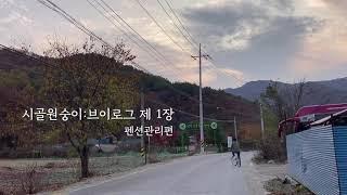 브이로그ㅣ요즘의 나♂️ (펜션관리,시골청년,시골일상,…