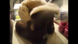 Washing UGG boots in the washing machine!