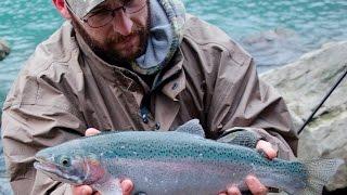 steelhead and lake trout fishing the lower niagara river