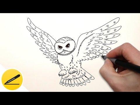 Как нарисовать белую сову