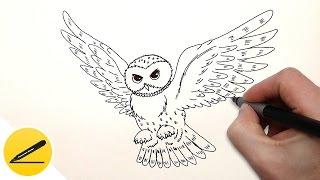 Как Нарисовать Сову поэтапно - Учимся рисовать Сову