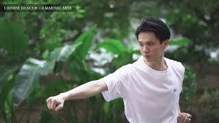 「中國舞蹈與中國武術之交互研究與成果呈現計劃」【捕捉一瞬間 — 研究員/舞者潘正桓分享】
