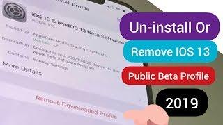 Remove ios beta profile