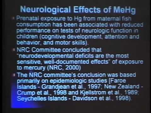 Michael Aschner, PhD discusses Mercury in Neurological Diseases L.V. 2007