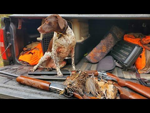 Minnesota Woodcock And Grouse Hunting Sept 2020