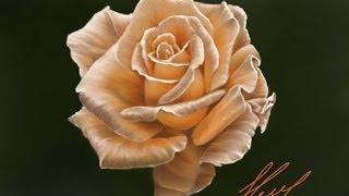 Рисуем цветок (Роза)(Как рисовать розу., 2013-09-04T15:13:07.000Z)