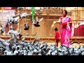 Kabootar Khana (Pigeons' Park) at Koti in Hyderabad | HD Video