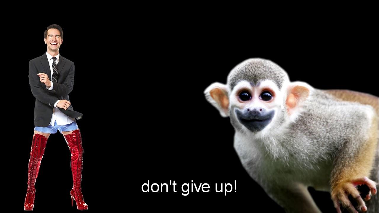 Image result for dont give up meme