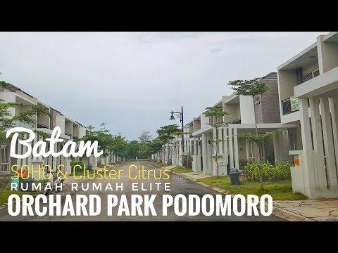 Keliling Rumah Rumah Elite ORCHARD PARK Citrus Podomoro Batam | Batam Luxury Homes