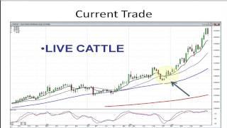 Best Gap Trading Strategies   Stephen Bigalow