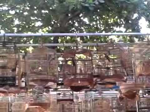video 2012 07 08 08 42 37