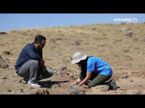 Erciş'te 400 Bin Yıllık Kalıntılar Bulundu – Dünyada Sadece 4 Yerde Var - Arkeolojik Kazılar Video