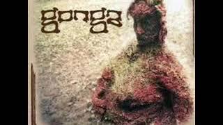 Gonga - Pocket Scientist