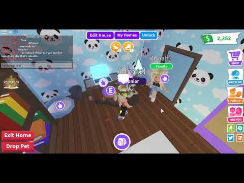 Routine With My Owl! {ROBLOX} {ADOPT ME} {With Noah Plays}