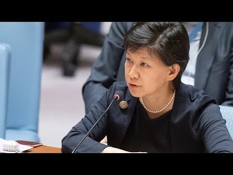 Chemical Weapons In Syria - Briefing By UN Nuclear Disarmament Chief