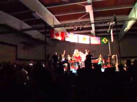 Crazy Capoeira Knockout