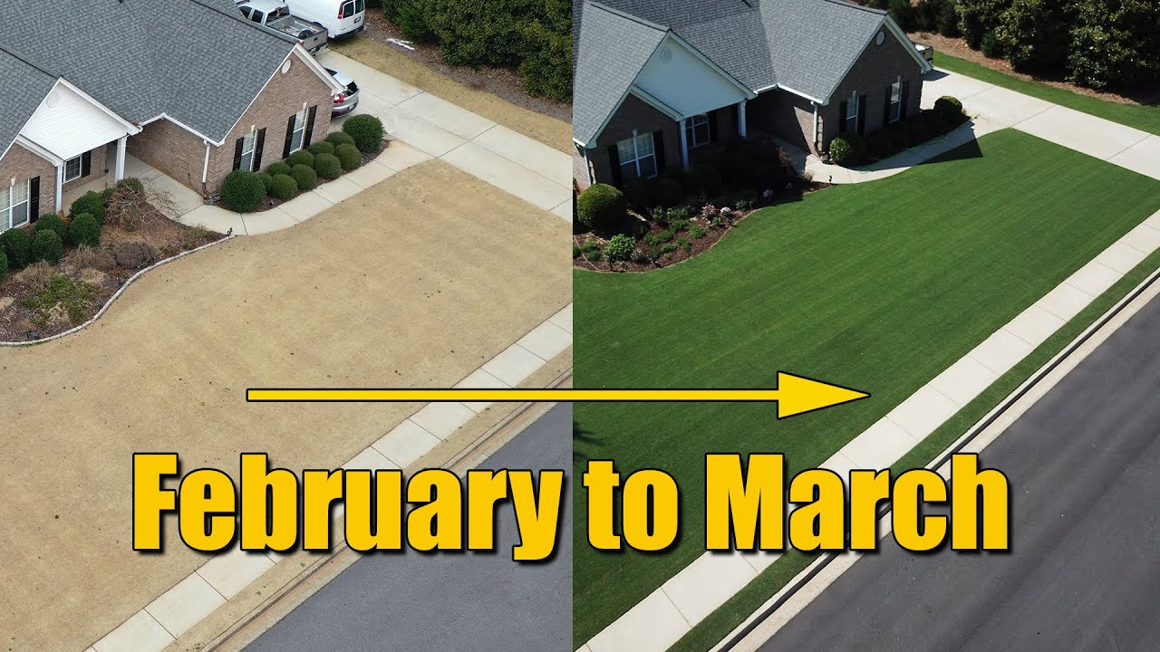 February Lawn Care - Late Winter Early Spring Lawn Tips
