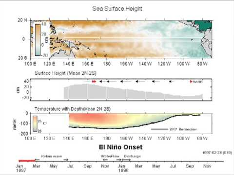 El Niño (ENSO) Sea Surface Height Animation