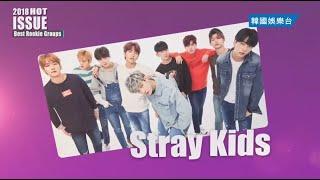 2018熱議焦點 / 2018 Hot Issue|《Stray Kids》|韓國娛樂台