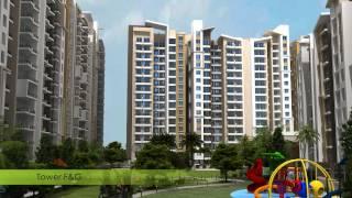 Ocean Park - Luxury Homes