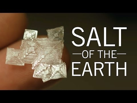 It's About Time You Knew Where Salt Came From