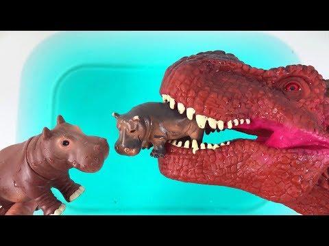Good Dinosaur Help Baby Hippo find Mom, Learn Wild Animals, Farm Animals and Sea Animals for Kids