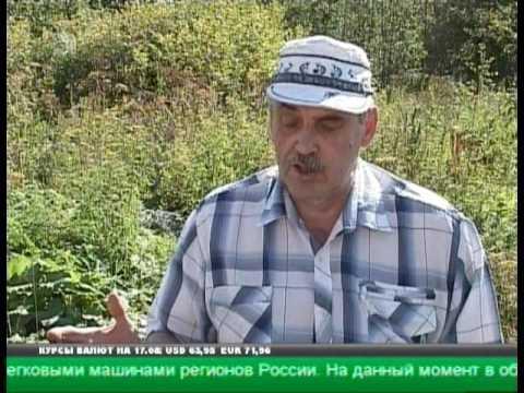 В Челябинской области инвалиду выдали земельный участок под строительство в трясине