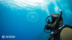 How to Get Scuba Certified