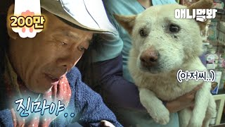 Man Who Found His Missing Dog Learns About A Shocking Truth