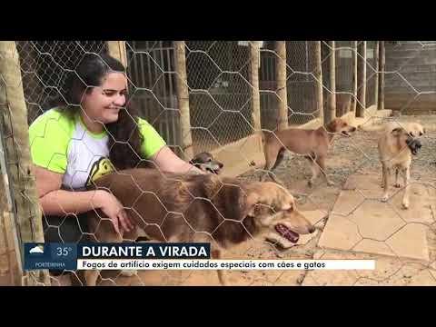 MG Inter TV 1ª Edição com Délio Pinheiro from YouTube · Duration:  1 minutes 51 seconds