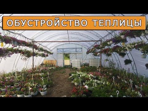 видео: Теплица фермерская  по уму | Что нужно что бы она работала круглый год ?