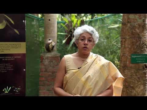 Dr. Madhura Swaminathan, Chairperson, MSSRF Speaks on MSSBG