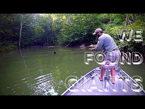 Chasing The Monsters Of Stonewall Jackson Lake EP 2 The Wise Man Said.... Largemouth Bass Fishing