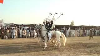 five star dvd dinga kharian gujrat  punjabi desi niza bazi  jashn-e-bharan gujranwala p 33