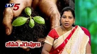 జీవన ఎరువులు | Dr Triveni Suggestions | Annapurna | TV5 News