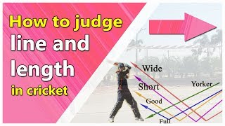 how to judge line and length of a ball technique cricket bat