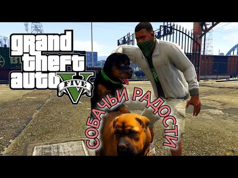 Собачьи радости   ЧОП   Отец и сын   Без комментариев  Grand Theft Auto V   GTA 5   Прохождение   #8