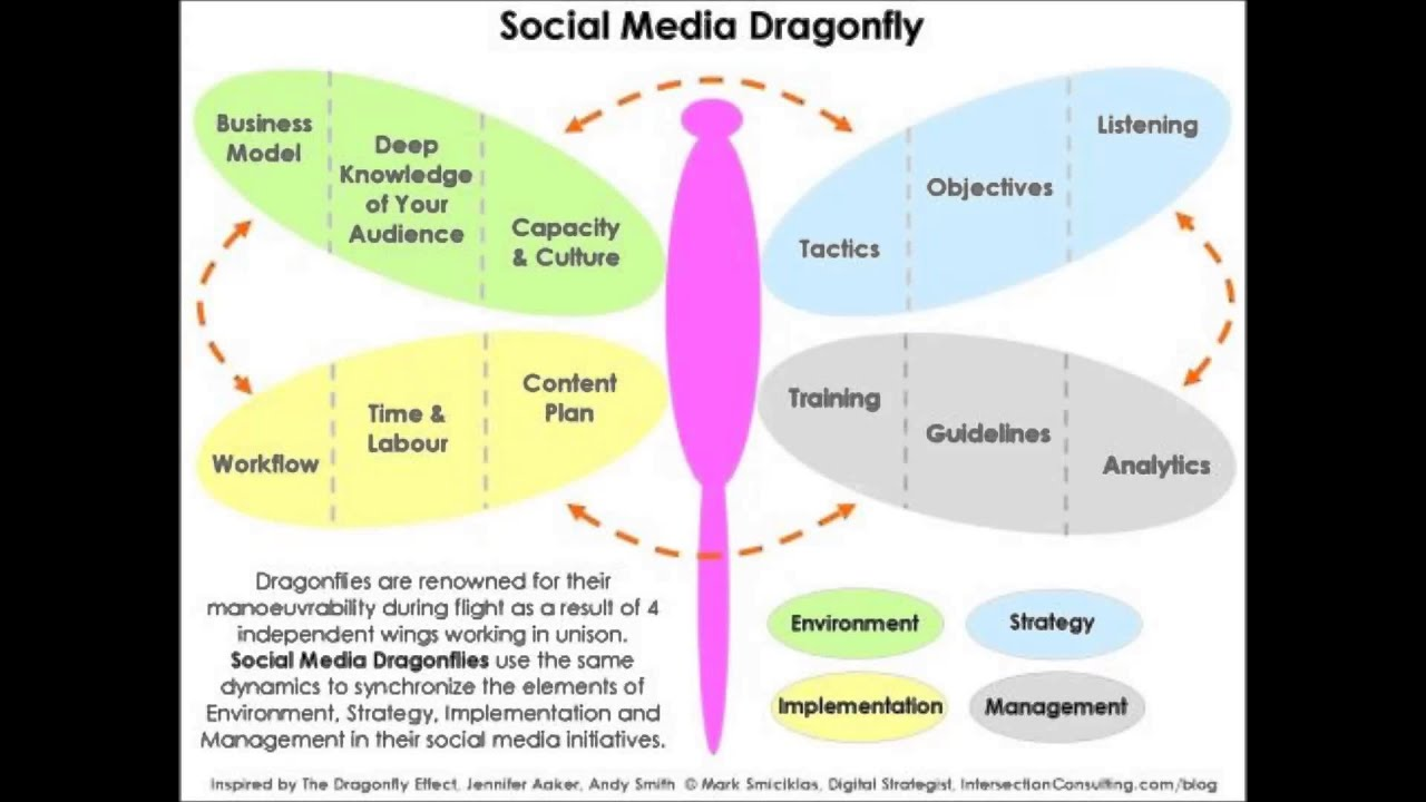 The dragonfly effect and social media youtube the dragonfly effect and social media pooptronica Image collections