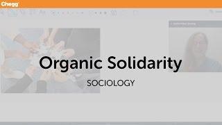 Organic Solidarity | Sociology | Chegg Tutors