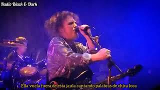 The Cure - Bird Mad Girl ( Sub Español )