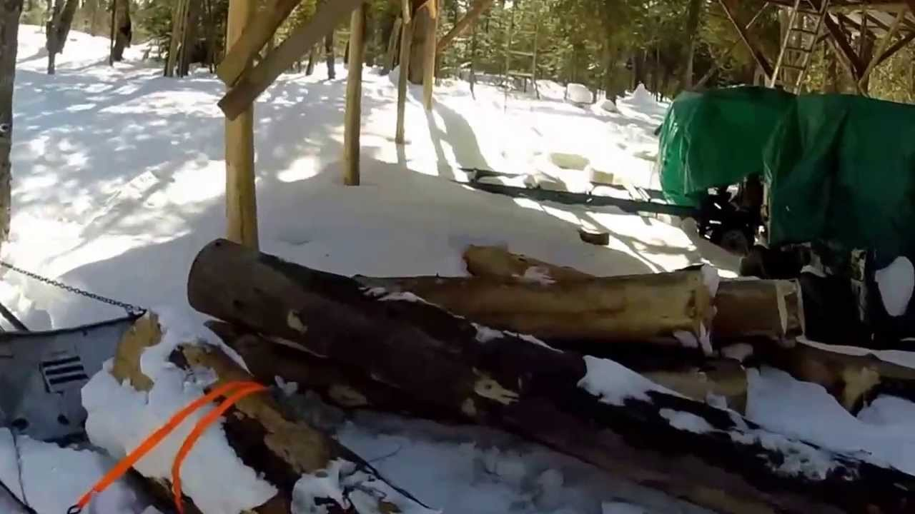Log Skidding With Snowmobile Part 2 Big Spruce Log Youtube