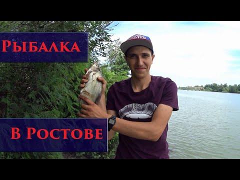 Рыбалка в Ростове-на-Дону/Аксай