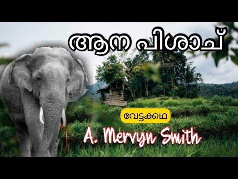 കൊല്ലഗലിലെ  Psycho  കൊലയാളി കാട്ടു-കൊമ്പൻ | Mad killer elephant |real hunting Story| Malayalam