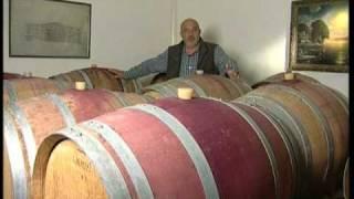 Технология производства честного вина