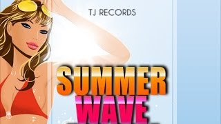 Shawn Storm - Nuh Problem [Summer Wave Riddim] May 2012