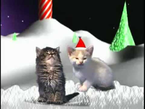 these cats wish you a merry christmas! (cats singing a chrismas song!)